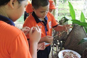 Hình ảnh các em học sinh cấp 1, cấp 2 Chương trình tour về quê cho các em học sinh cấp 1, cấp 2 do trung tâm Tâm Việt Nha Trang tổ chức tại KDL Sinh Thái Nhân Tâm