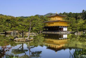 Choáng ngợp ngôi chùa được dát bằng vàng thật ở Nhật Bản